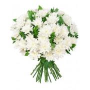 Букет 15 хризантем